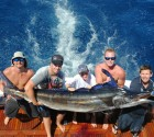 little_audrey_black_marlin